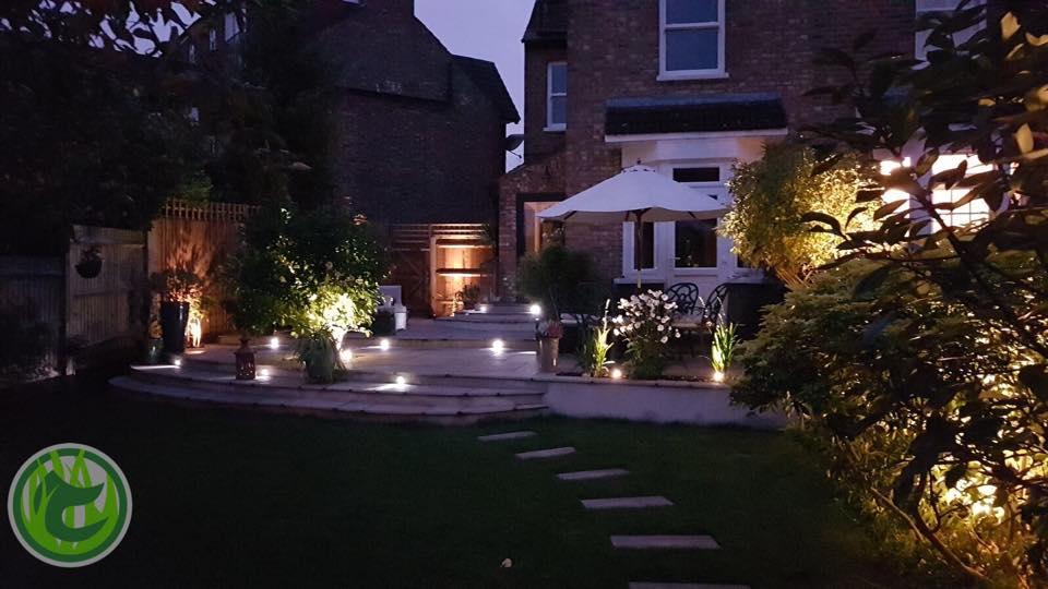 Garden in the dark